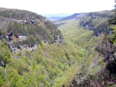 Cloudland_Canyon1